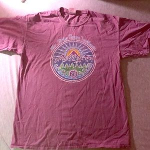 42481555 Comfort Colors Shirts   String Cheese Incident T Shirt   Poshmark